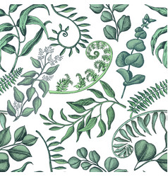 Hand drawn pattern eucalyptus succulent flowers vector