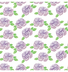Pattern of purple flowers roses vector image