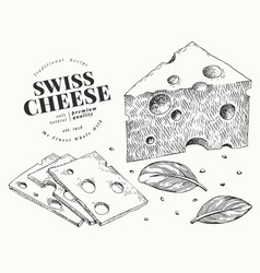 swiss cheese hand drawn dairy engraved style vector image