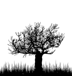 Tree and grass in silhouette are isolated on white vector image