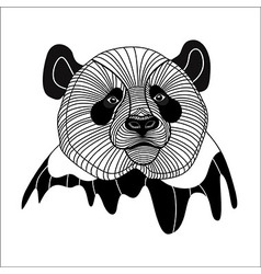 Bear panda head animal line symbol for mascot embl vector image