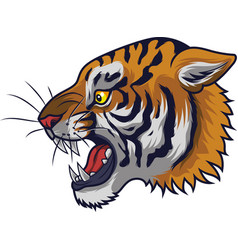 Angry tiger head mascot vector