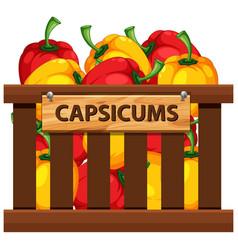Capsicums in wooden crate vector