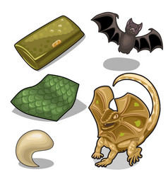 Figure of frill-neck lizard theme and bat vector