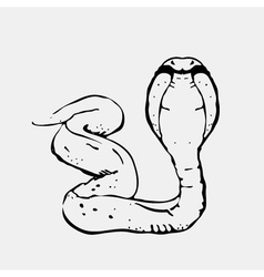 Hand-drawn pencil graphics snake cobra Engraving vector