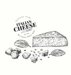Italian cheese chunk hand drawn dairy engraved vector