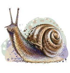 snail realistic color artistic portrait vector image