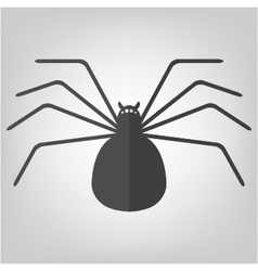 Spider icon for Halloween vector