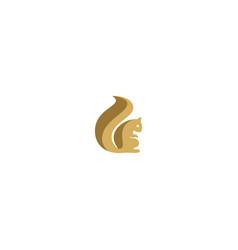 squirrel animal logo vector image
