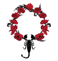 poppy and scorpion vector image vector image