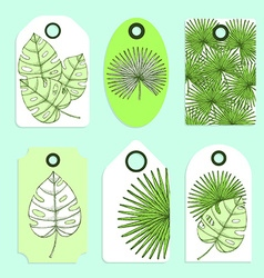 Engraved palm leaves set of tags vector image vector image