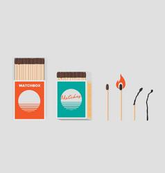match and matchbox set sticks in open cardboard vector image