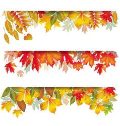seasonal banners of autumnal leaves vector image