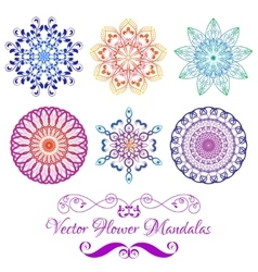 Color Floral Mandala Set isolated on white vector image vector image