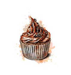 Chocolate cupcake from a splash of watercolor vector