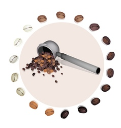 Filter for Coffee Machine With Coffee Bean vector image