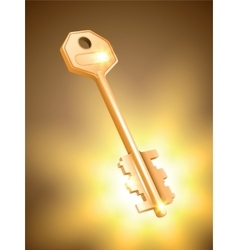 Golden key on colorful background vector