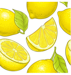 Lemon fruit pattern on white background vector
