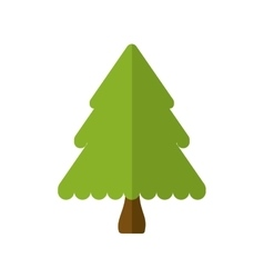 pine tree merry christmas icon vector image