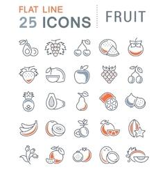 Set Flat Line Icons Fruit vector image