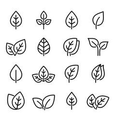 Set line leaf icons vector