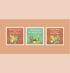 summer plant and house plants advertise template vector image
