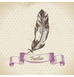 Vintage background with feather vector