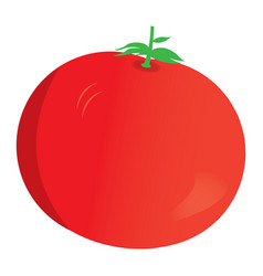 isolated apple icon vector image