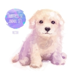 dog hand painted watercolor vector image vector image