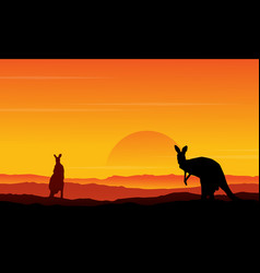silhouette of kangaroo on the hill scenery vector image