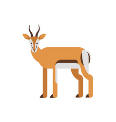 flat style of antelope vector image