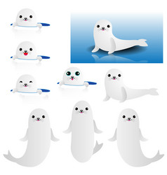collection of cute baby seal vector image