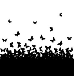 the silhouettes of butterflies vector image