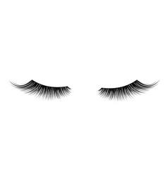 black false eyelashes mascara single decorative vector image