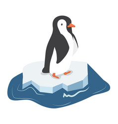 cute penguin on a piece of iceberg vector image