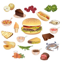 Different kinds of food vector