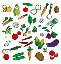 Farm vegetables and herbs sketches vector