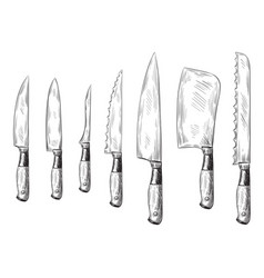 hand drawn dinner knife vintage chef knives vector image