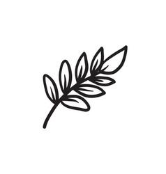 palm branch sketch icon vector image