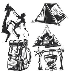 set camping elements vector image