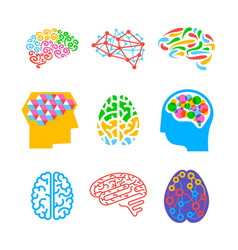 Set human brains isolated on white background vector