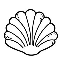 shell cartoon isolated vector image