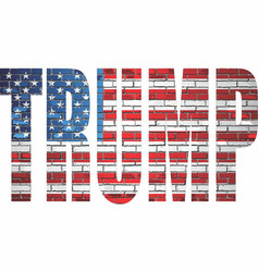 Trump on a brick wall with usa flag inside vector