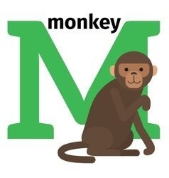 English animals zoo alphabet letter M vector image