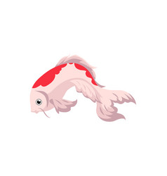 japanese asian koi carp goldfish gold fish vector image