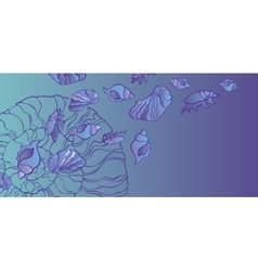 set of seashell seamless background vector image