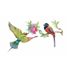 Watercolor colorful Birds and butterfly with vector image vector image