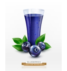 Glass cup with juice of blueberries isolated vector