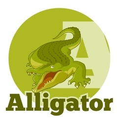 ABC Cartoon Alligator2 vector image