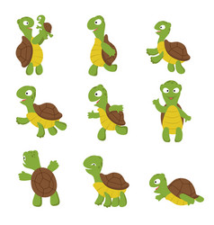 Cute turtle green tortoise child in various poses vector
